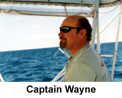 captain wayne goldsmith