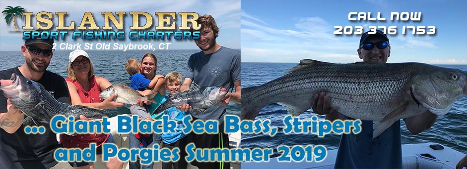 0140-Giant-Black-Sea-Bass-2019